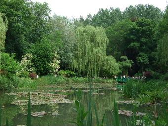 睡蓮の庭1