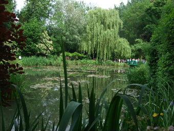 睡蓮の庭2